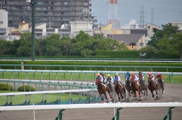【競馬】第4コーナーで逃げた馬