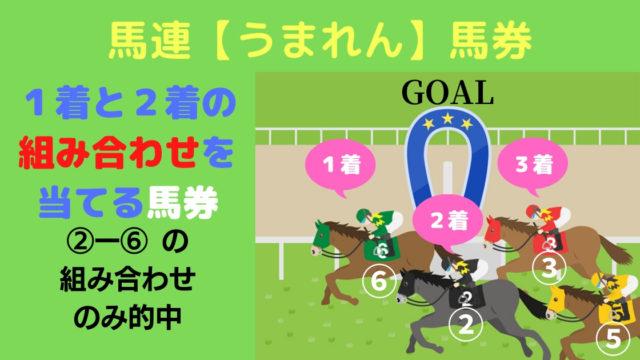 【競馬】馬連馬券の説明(馬券の真実)