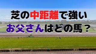 【競馬】芝の中距離で強い お父さんはどの馬?
