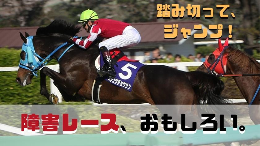 【競馬】障害レースは、面白い。