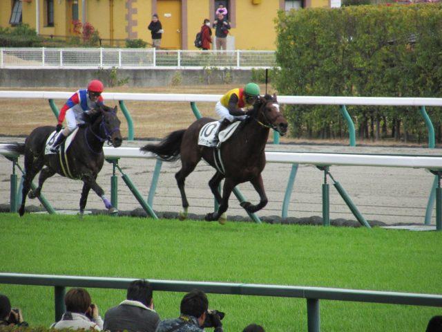 【競馬】障害レースのゴール前の上がり