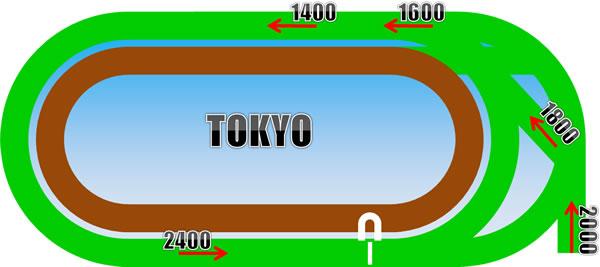 東京競馬場のコース