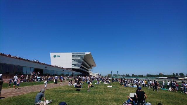 札幌競馬場でなごむ
